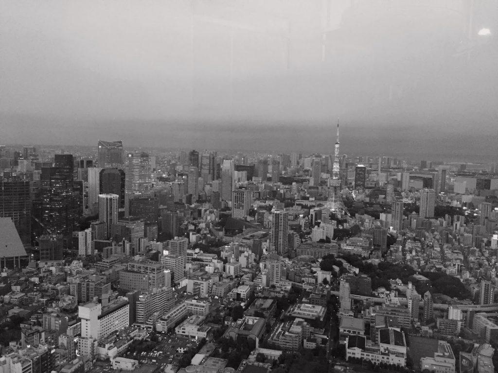 173days_in_japan